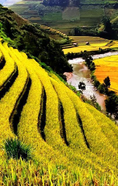 农业网址大全_农业公司名称大全3721农业网址大全韩国农业