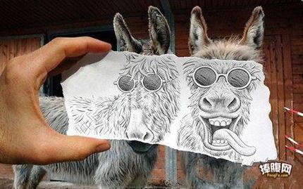 驴都被你玩坏了