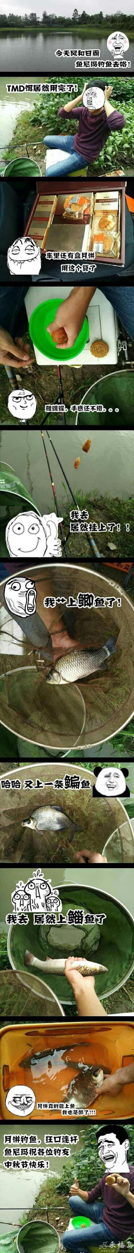 鱼尼玛教你如何用月饼钓鱼!